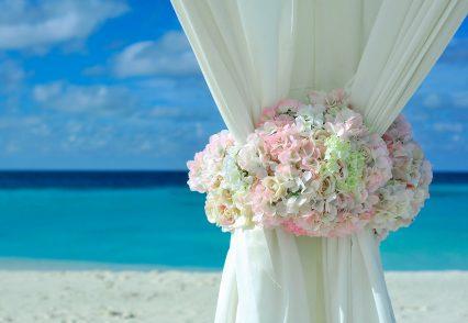 Miami Heiratsvermittler